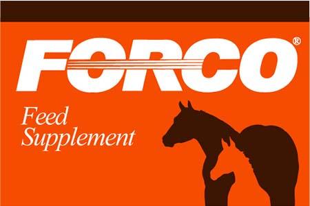 Forco, LLC
