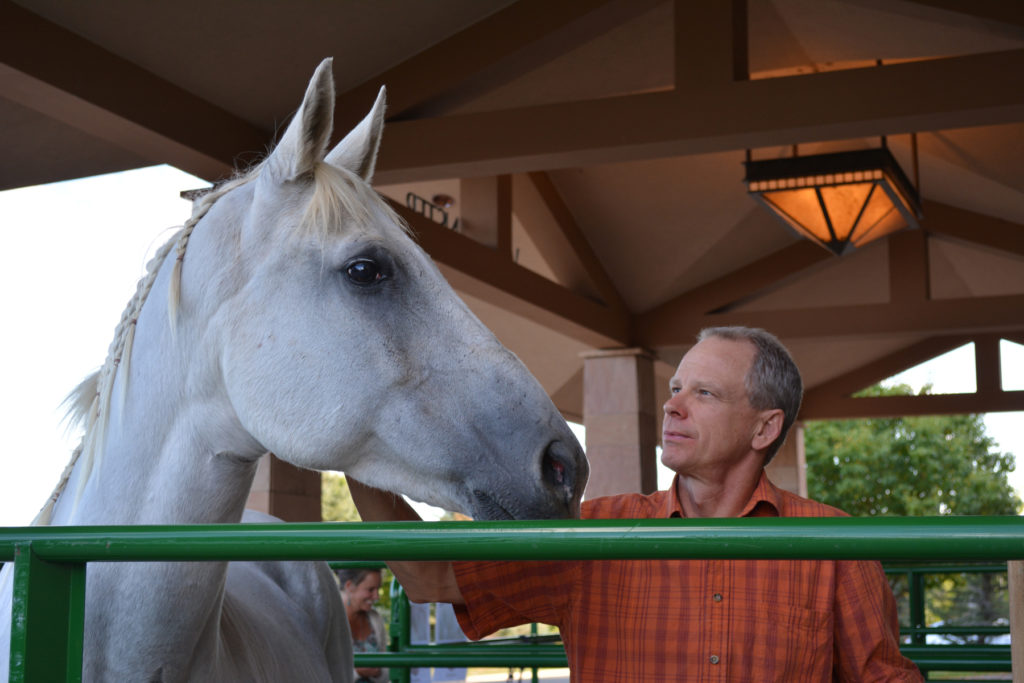 Attendees meet horses from CHR!