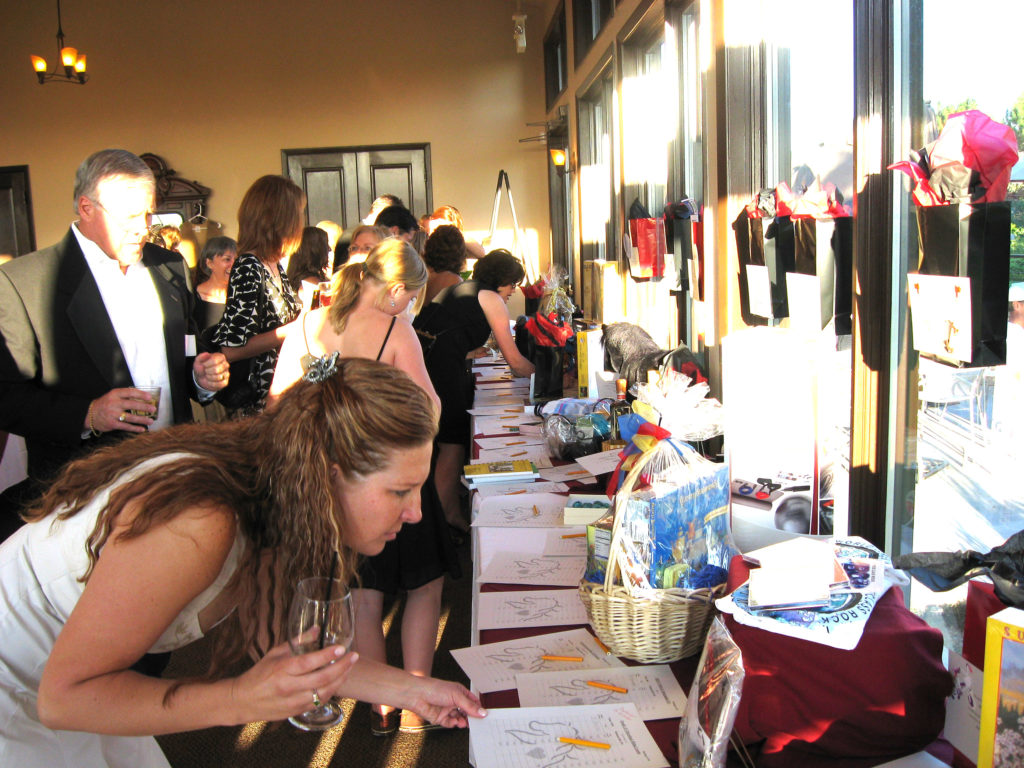 Mane Event Silent Auction