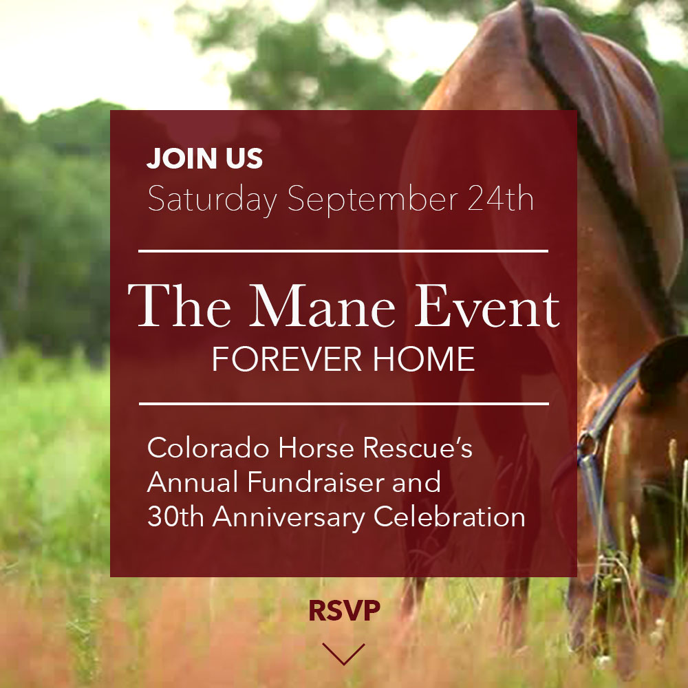 Click here to buy tickets to the Mane Event Benefit | September 24th, 2016