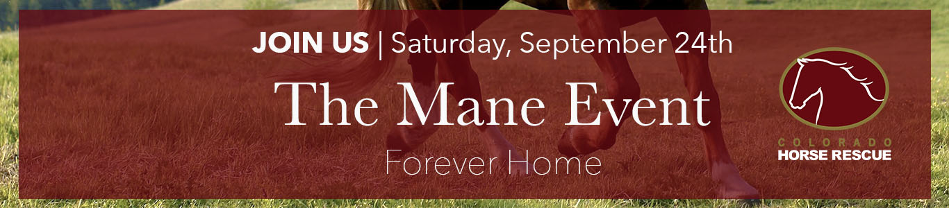 Colorado Horse Rescue's Mane Event Benefit