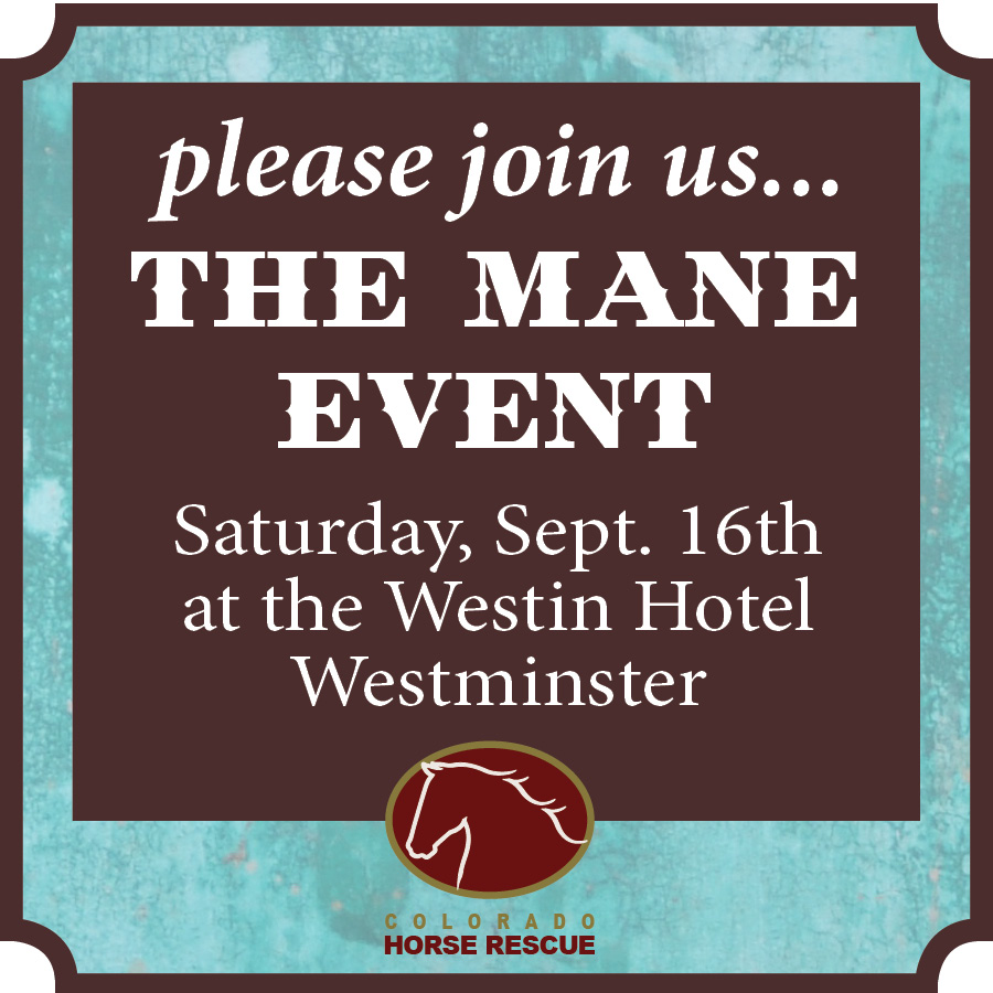 Click here to buy tickets to the Mane Event Benefit | September 16th, 2017
